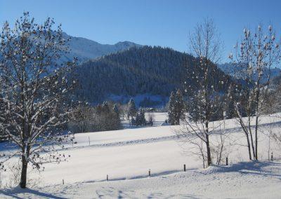 Bergbauernhof Haug